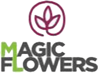 Magic Flowers - Logo