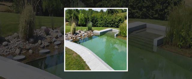stylish pond