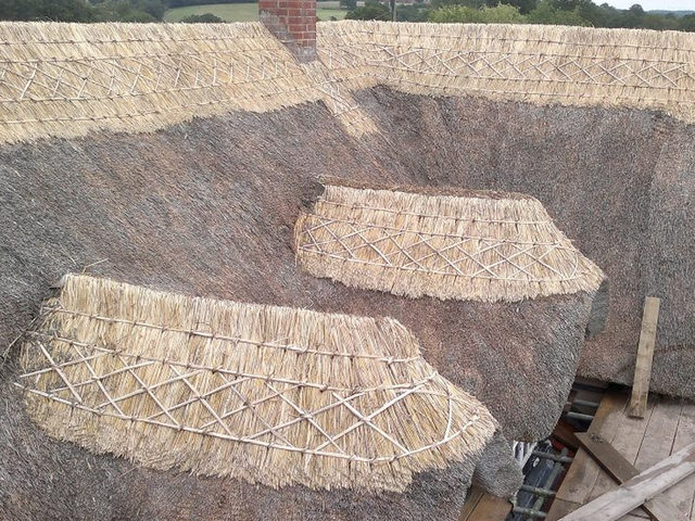 Quality thatching