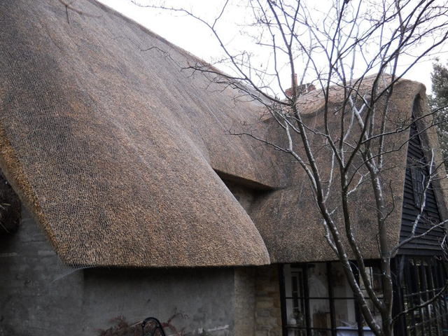 Roof thatching experts