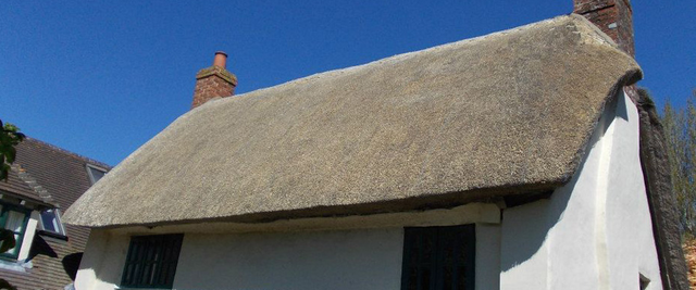 Thatched roof services