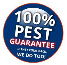 100 percent termite treatment guarantee