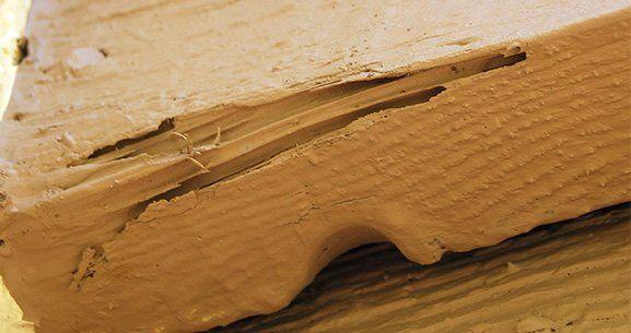 treating termites gold coast