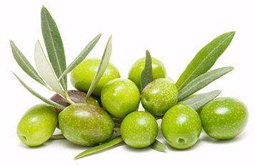 delle olive verdi