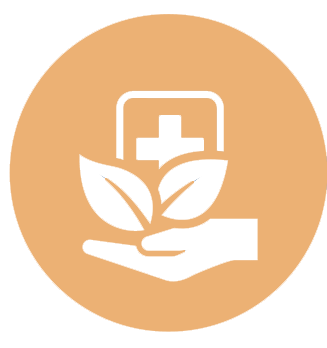 hand holding leaves and medical symbol