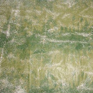 art.109 - carta verde con neve