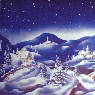 art.125 - rotolo fondale con neve