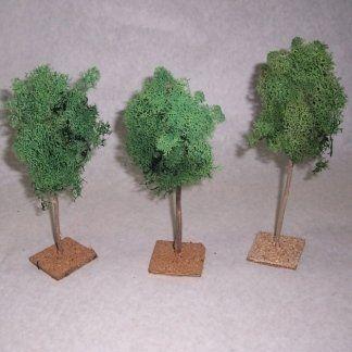 art.310 - albero lichene