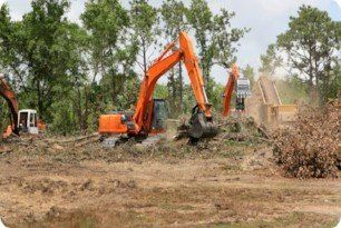 land clearing - Charleston, Summerville, Mt. Pleasant, Moncks Corner SC