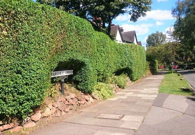 garden pave way