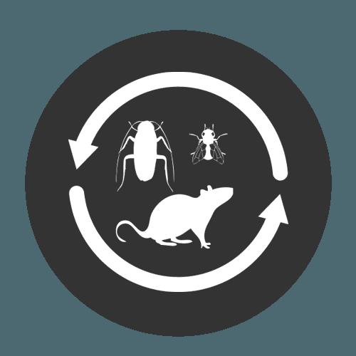icona derattizzazione