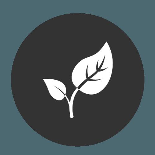 icona foglia