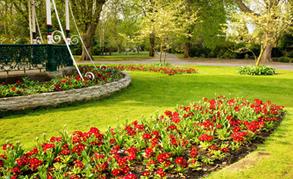 Qualified gardeners