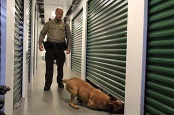 Approved K9 Training Faciliis U2014 Self Storage In Madison, WI