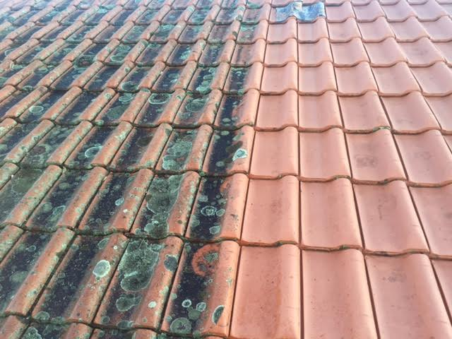 cleaned roof