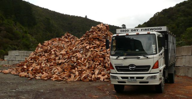 A pile of firewood and a truck