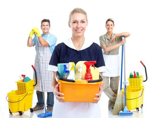 Team of cleaning professionals