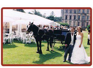 a wedding marquee on a wedding day