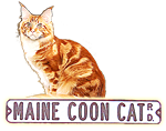 Megacoon Maine Coon Cat Cattery