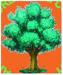 AFC Tree Care logo