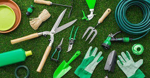 Assortimento di prodotti per il giardinaggio