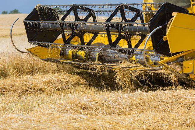vendita di attrezzature agricole e zootecniche