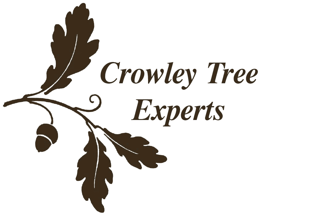 Crowley Tree Experts