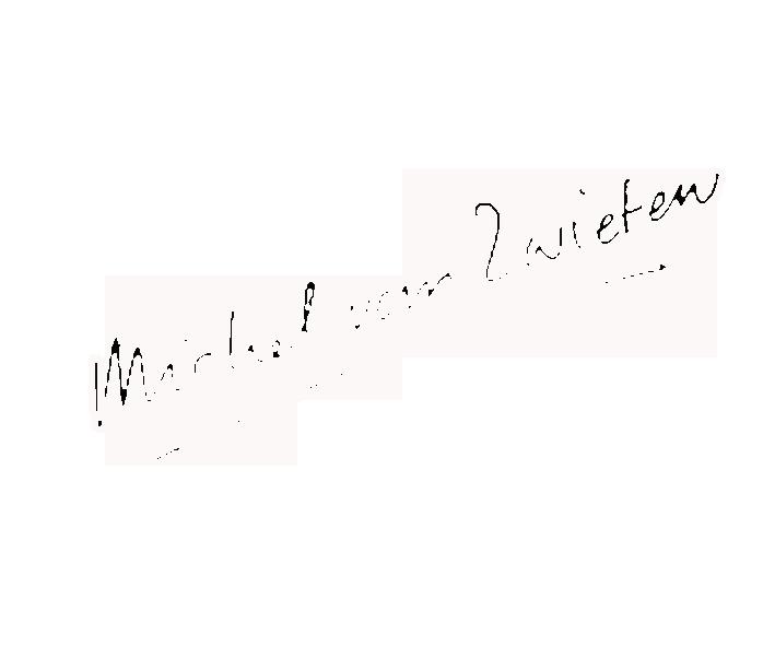 Michel van Zwieten