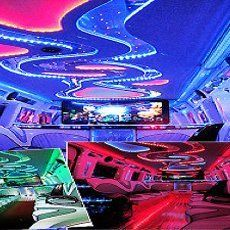 Themed party busses