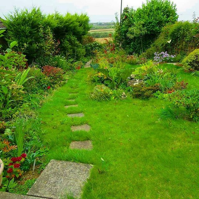Garden Maintenance Solutions Paramount Lawns Landscaping