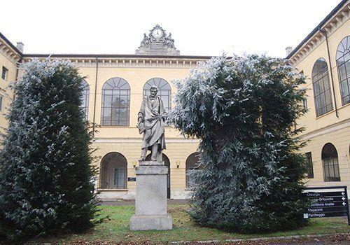 una statua in un giardino, piante e un palazzo