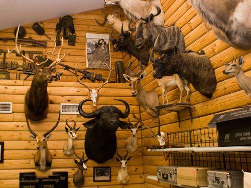 Gun Shop North Little Rock, AR