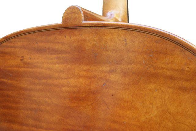 New Rogeri model cello back and button