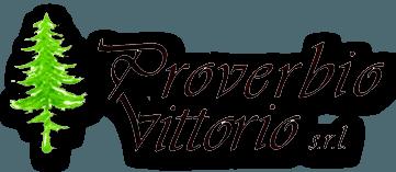 Proverbio Legnami Legname Da Costruzione E Per Imballaggio