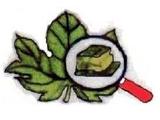 Agridaunia - Logo