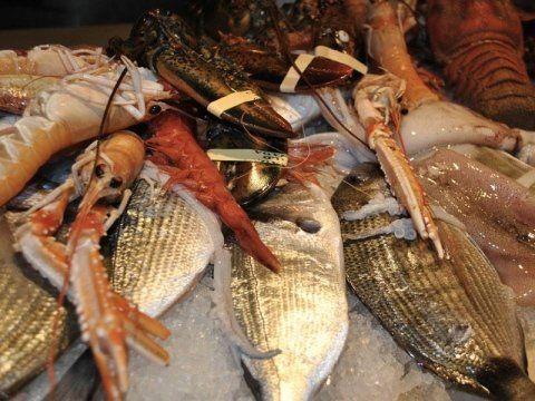 Ristorante Di Pesce Bari La Vela