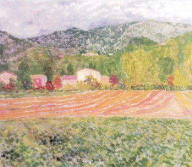 pittura a olio, quadri su tela, acquerelli