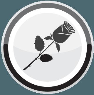 servizio fiori
