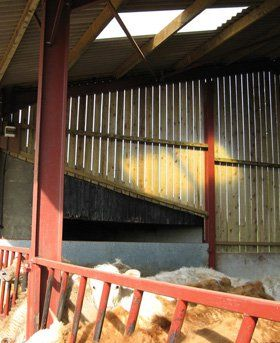 Steel Suppliers & Agricultural Buildings | Wales & Herefordshire: