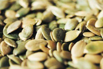 Stubble-aid - Downham Market, Norfolk - Acorn Seeds Ltd - Seeds