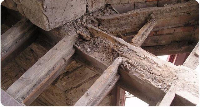 Dry rot repairs in progress  - floor joists