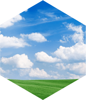 Blue sky with clouds and green grass