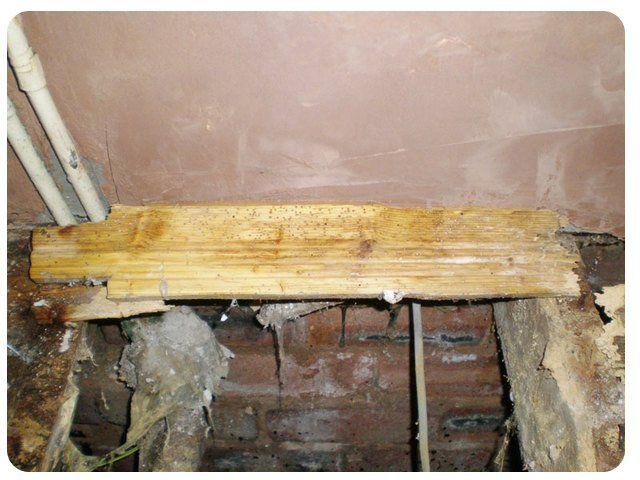 woodworm repairs in progress