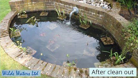 After pond cleaning