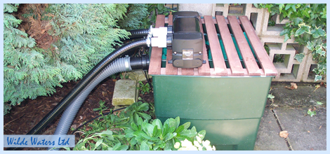 filtration maintenance