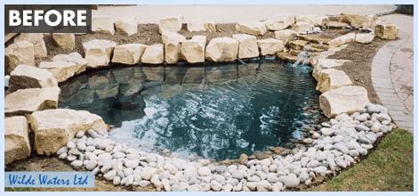 before aquatic planting
