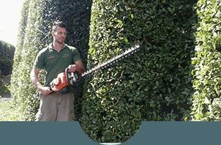 giardiniere mentre pota delle siepi