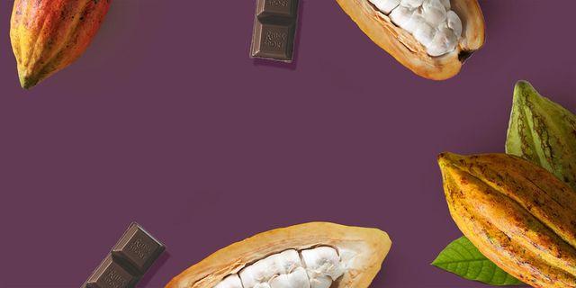 Golden peanuts sport xxl ritter Poland