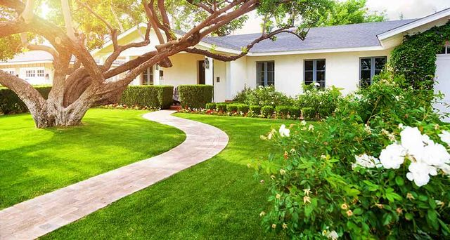 Lawn Care in the Hills District | Green Grass Lawn Services
