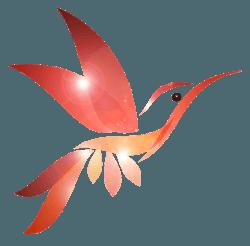 Logo Massage Thai Shiatsu